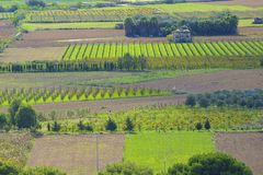 Farmlands in Malta Royalty Free Stock Photography