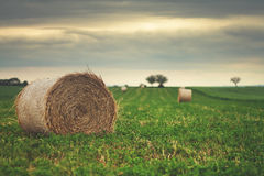 Farmlands Royalty Free Stock Images