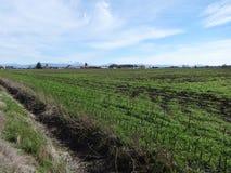 Farmlands Stock Photo