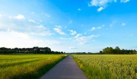 Farmlandscape vert frais   Photos libres de droits