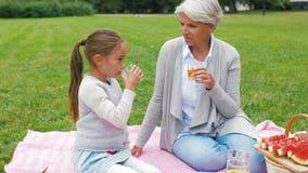 Farmodern och sondottern på picknicken parkerar in arkivfilmer