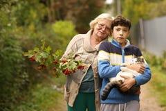 Farmor med sonsonen med viburnum- och kattslut upp fotoet på grön trädgårdbakgrund arkivbilder