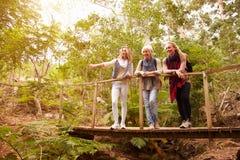 Farmor, moder och dotter på en bro i en skog arkivfoto