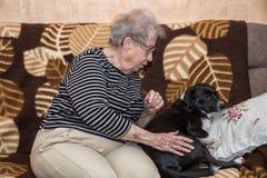 Farmor på soffan med en hund royaltyfri fotografi