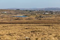 Farms with Bog, vegetation and lake. Clifden, Galway, Conemara, Ireland royalty free stock images