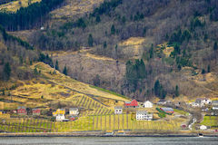 Fjord Farms, Hardangerfjord, Norway. The red and white buildings of a farming community dot the landscape on the edge of the Hardangerfjord, near Eidfjord, in Stock Photography