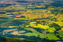 Farms and homes in the Shenandoah Valley, seen from Shenandoah N. Ational Park, Virginia Royalty Free Stock Photos