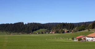 Farms In the mountains. Farms and forest In the Switzerland mountains Royalty Free Stock Photography