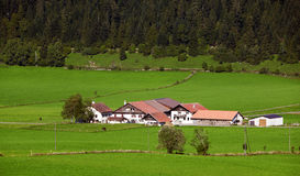 Farms In the mountains. Farm and forest In the Switzerland mountains Royalty Free Stock Photos