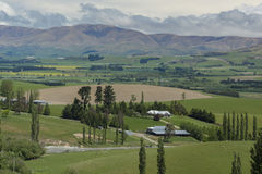 Farms of New Zealand Stock Image