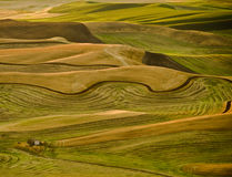 Farms of Palouse. Washington after harvest Royalty Free Stock Photos