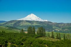Farms and ranches in Oregon with Mount Hood in the background. Agricultural land at the base of Mount Hood in Oregon Stock Photos