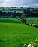 Farmscape, Ireland Stock Image