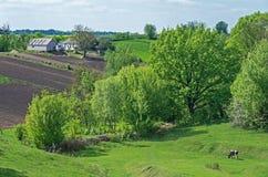 Farmstead on hillside Stock Photography