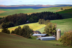 Farmstead in the Palouse Royalty Free Stock Images