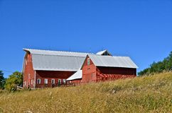 Farmstead in Red. A well groomed farmstead consists of three red connected building Royalty Free Stock Photos
