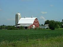 Farmstead rural Foto de Stock Royalty Free