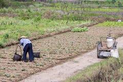 Farmwoman in Cina Fotografie Stock Libere da Diritti