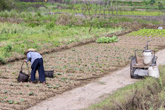 Farmwoman en Chine Photos libres de droits
