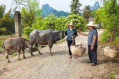 Farmwomen chinos con los búfalos y bebé en cestas Fotografía de archivo libre de regalías