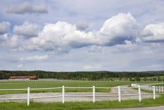 farmyard Obrazy Stock