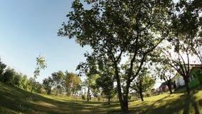 Farmyard orchard dolly stock video