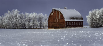 Farmyard zimy dzień Obrazy Royalty Free