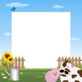 farmyardram Arkivbilder