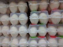 Farn新鲜的鸡蛋 免版税库存图片