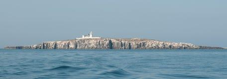 在Farne海岛上的雍容亲爱的灯塔 免版税库存照片