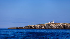 Farne Islands Lighthouse Royalty Free Stock Photo