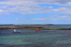 Farne Islands Northumberland Royalty Free Stock Photography