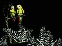 Farne mit Papageien Lizenzfreies Stockbild