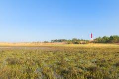 Faro alla spiaggia Fotografia Stock