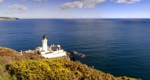 Faro con el arbusto y el mar amarillos Imagen de archivo