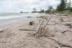 Faro con madera de deriva en el lago Erie fotografía de archivo libre de regalías
