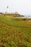 Faro de la estación de la luz del punto de la paloma Foto de archivo libre de regalías