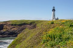 Faro de Yaquina rodeado por los wildflowers en la costa de Oregon fotografía de archivo libre de regalías