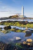 Faro della st Marys alla marea bassa Fotografia Stock