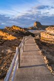 Faro di Castlepoint, bei colori di alba In qualche luogo in Nuova Zelanda fotografia stock