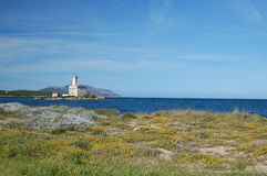 Faro di Olbia Fotografia Stock