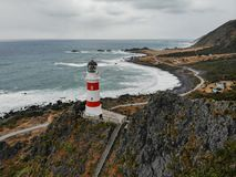 Faro di Palliser del capo, Nuova Zelanda fotografia stock