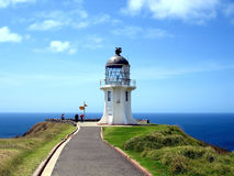 Faro di Reinga del capo, Nuova Zelanda Fotografia Stock