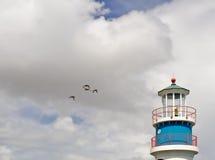 Faro ed uccelli di mare Fotografia Stock Libera da Diritti