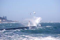 Faro en KalkBay Ciudad del Cabo, Suráfrica fotografía de archivo