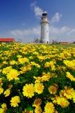 Faro in Paphos Fotografia Stock Libera da Diritti