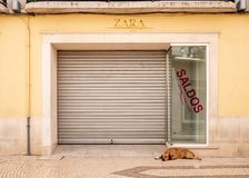 Closed and empty shop. FARO, PORTUGAL - 6 AUGUST 2018: A dog sheltering in the doorway of a closed and abandoned retail store in central Faro, Portugal Royalty Free Stock Photos