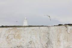 Faro sulle scogliere bianche di Dover, Regno Unito Fotografia Stock