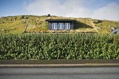 faroe房子海岛屋顶草皮 免版税图库摄影