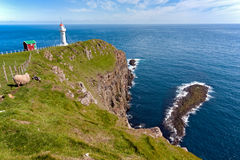 Faroe Island landskap av den Akraberg fyren Fotografering för Bildbyråer
